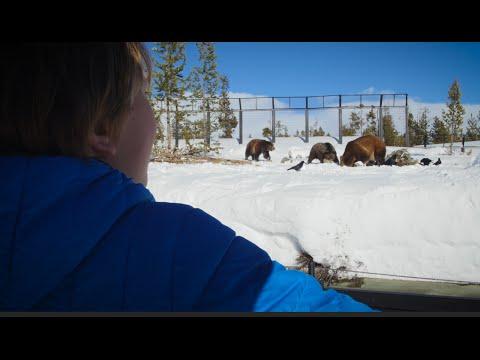 West Yellowstone Winter Weekend Adventure