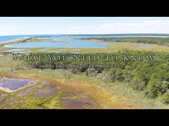 What You Need to Know with Mike Richardson featuring: Dawn Thayer, Mashpee Town Accountant