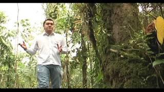 Vigía del Fuerte: Un pueblo sin oportunidades pero con esperanza