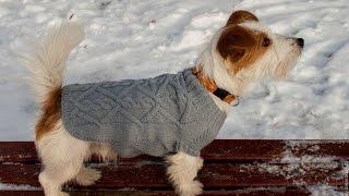 Вязаная одежда для собак! Вязаный свитер для собаки! Вязаная одежда для собак своими руками