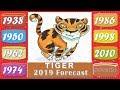 Tiger Horoscope 2019 | Born 1938, 1950, 1962, 1974, 1986, 1998, 2010