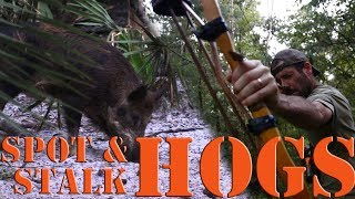 Bow Hunting wild hogs with primitive recurve selfbow
