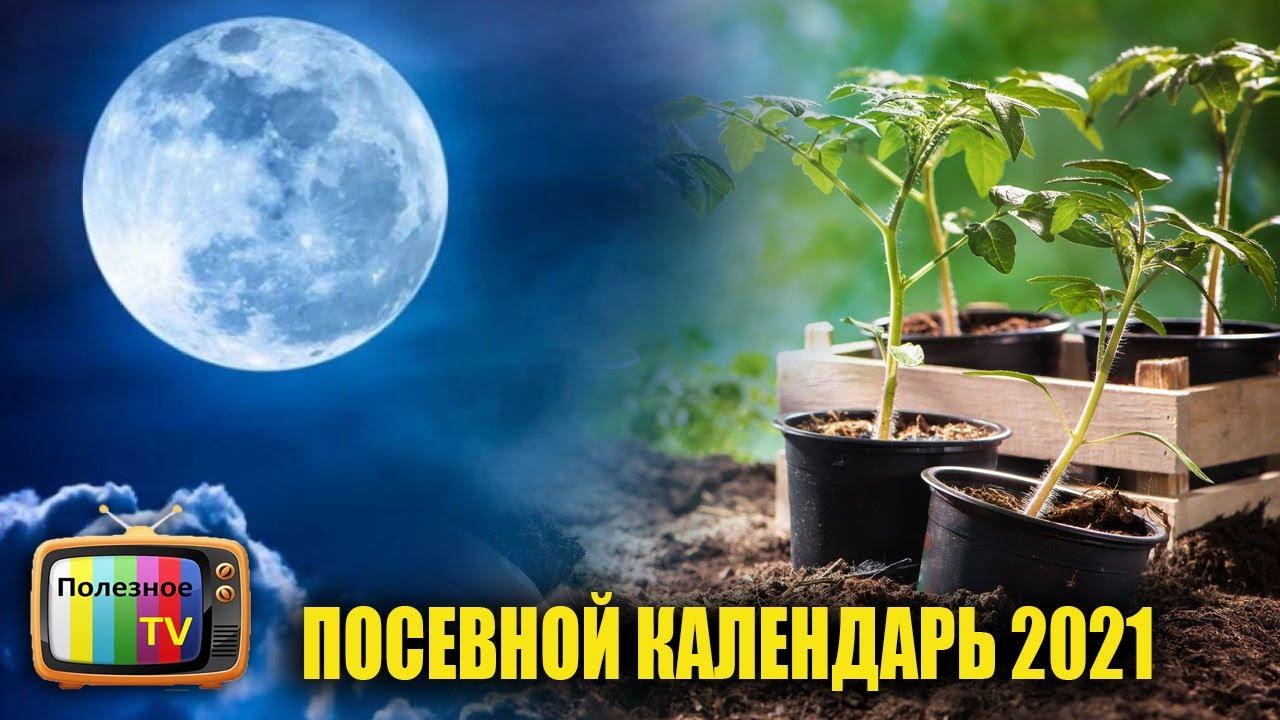 САМЫЙ ТОЧНЫЙ ПОСЕВНОЙ КАЛЕНДАРЬ НА 2021 ГОД