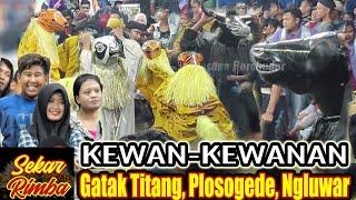 Kewan Kewanan Sekar Rimba Indonesia Perform@ Gatak Titang, Plosogede, Ngluwar