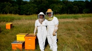 Honey Producing Under New Texas State Law