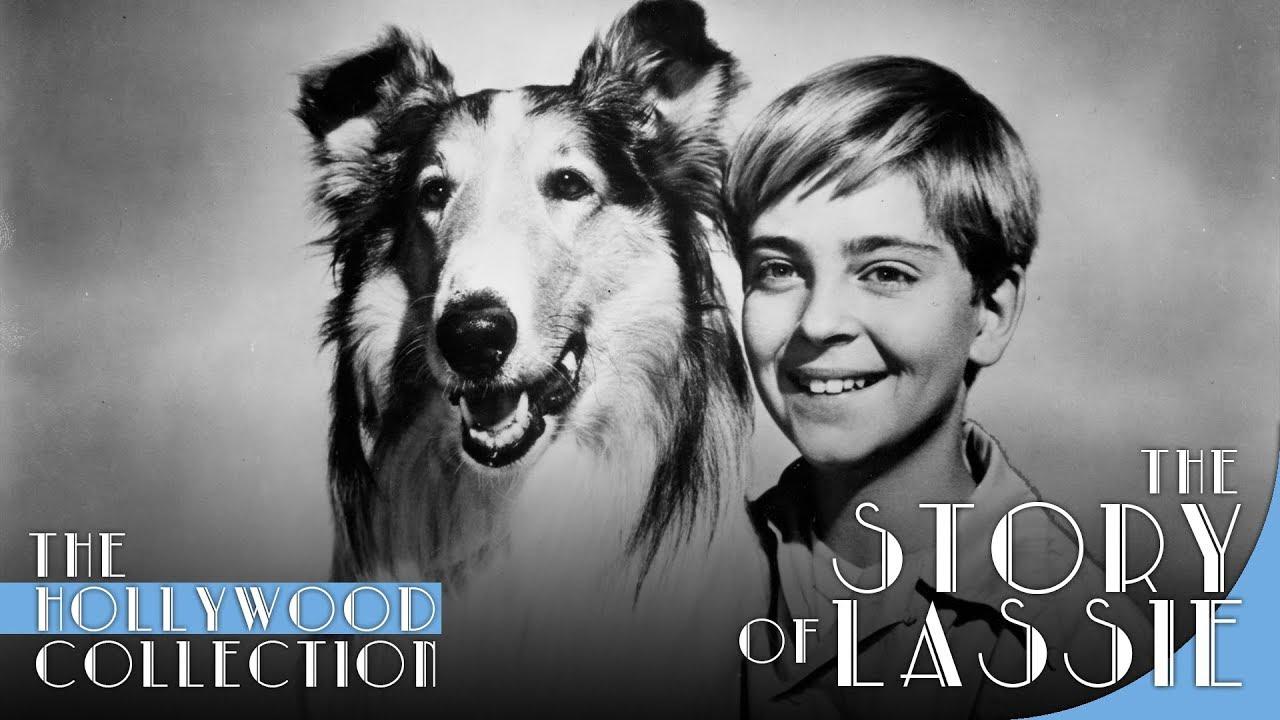 Karakter Lassie (kiri).