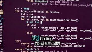미래의 언어, 코딩 / YTN 사이언스
