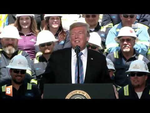 Trump: Democrats Like Wind Energy Even Though 'It Kills All the Birds.'