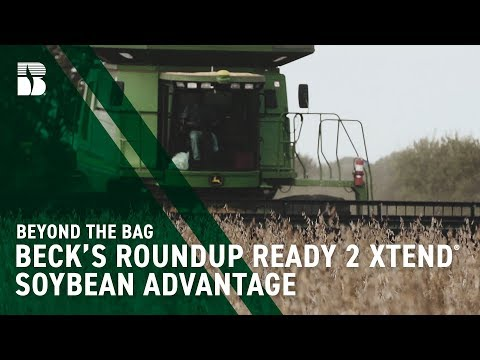 Beck's Roundup Ready 2 Xtend® Soybean Advantage | Beck's Beyond the Bag