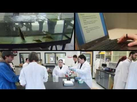 Environmental Technician Program at St. Lawrence College