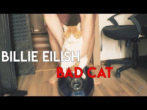 MADEVIL - BAD CAT (BILLIE EILISH ANIMAL COVER) ЛЮТЫЙ ТРЕК