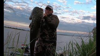 ТАКОГО Я НЕ ОЖИДАЛ!!! Рыбалка с ночёвкой. Запрет на рыбалку и всё такое...