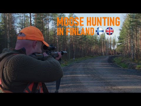 Hirvijahti 2020 || Moose hunting in Finland 2020