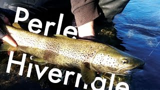 1 touche, 1 poisson : grosse surprise aux leurres en 2nd catégorie!