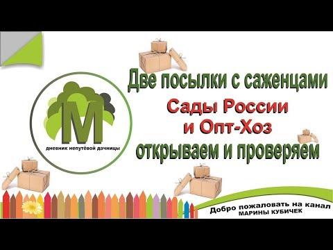 Открываем посылки с САЖЕНЦАМИ с Садов России и Опт-Хоз