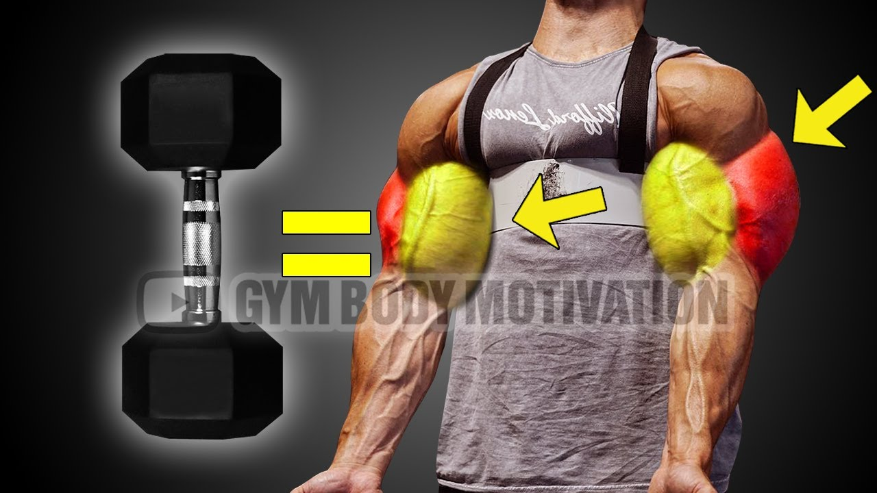5 Essential Dumbbell Exercises for HUGE arms