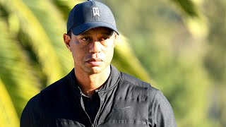 Reconstructing Tiger Woods's Car Crash Scene