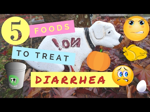 5 Foods to Treat Diarrhea
