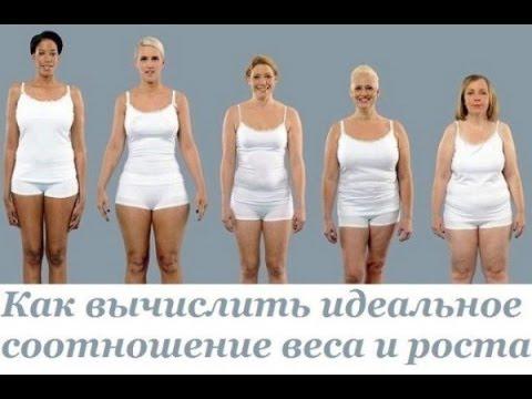 Индекс массы тела и ваш идеальный вес. Вычислить