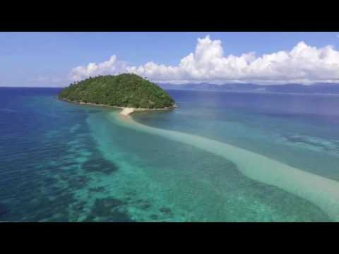 Island Life Farms -Tropical Island Snack Food Farm