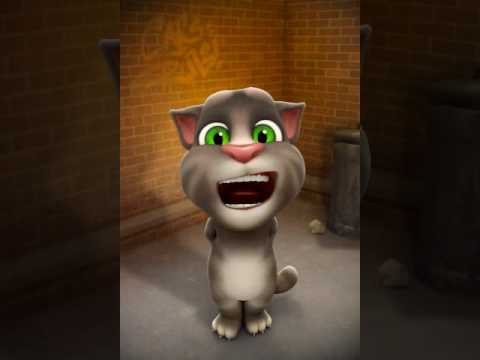 Talking tom funny