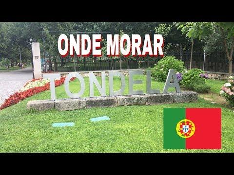VIVER EM PORTUGAL | TONDELA