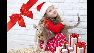 ТОП недорогих подарков на Новый Год Собаки 2018