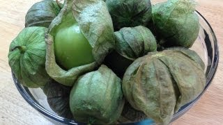 When Is It Ripe? Tomatillos