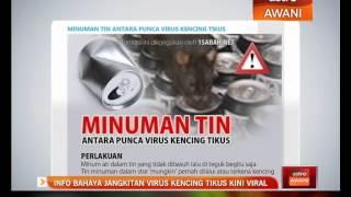 Info Penyakit Leptospirosis -RS Panti Nirmala Malang.