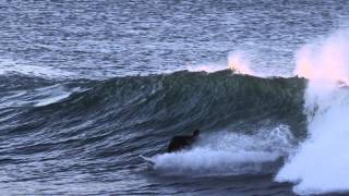 Dane Reynolds - BOILER BOYS