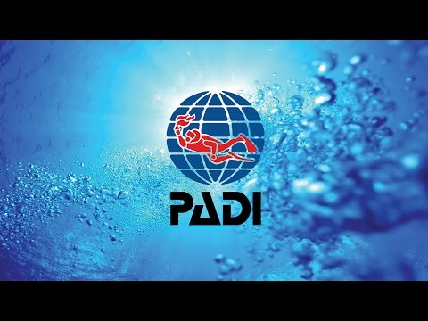 Expedition Dive - PADI Open Water Course in Sydney