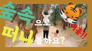 윤서와 윤아가 다녀온 세계문화유산 동구릉~!! 집에만 …
