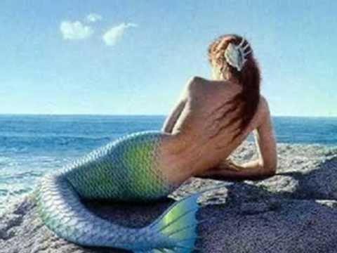 ♫ ♪♫ ♪    Canto da Sereia ♫ ♪♫ ♪ Marisa Monte