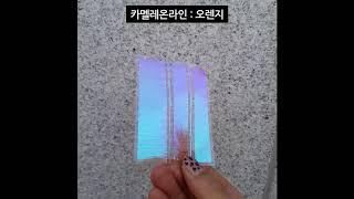 [미소예] 카멜레온라인색변화 종합