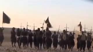 15.09.2014 Реакция Кэмерона на казнь британца боевиками ИГ