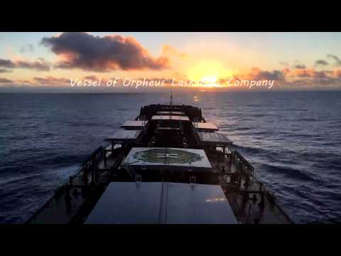 Bulker Orpheus, Life at the sea.