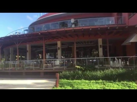 Barcelo Bavaro Palace Deluxe и Barcelo Bavaro Beach отели в Доминикане
