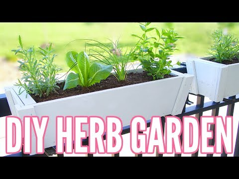 diy-herb-garden-|-how-to-plant-an-herb-garden---great-for-apartments!!-easy-beginner-gardening!!