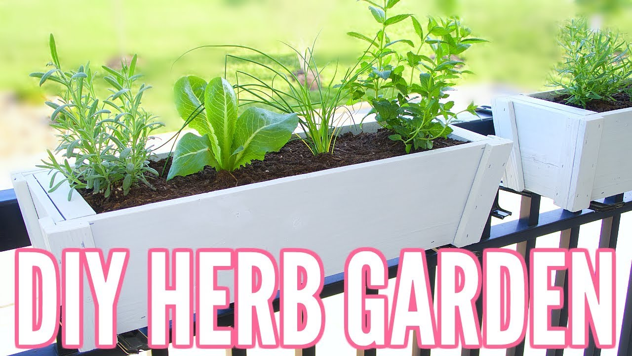 DIY HERB GARDEN | How To Plant An Herb Garden   Great For Apartments!! Easy Beginner  Gardening!!