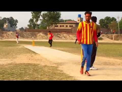 punjab cricket live