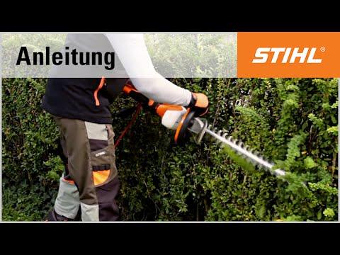 Schnitt-Technik Elektro-Heckenschere: Trapezschnitt mit der STIHL HSE 61