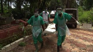World Health Organization condemns Canada's freeze on visas from Ebola affected countries