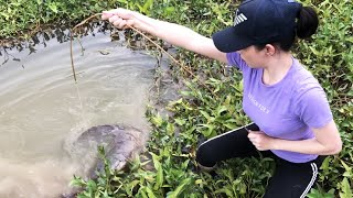 Unbelievable FISH TRAP with Tiny Fishing Rods Catch HUGE Fish