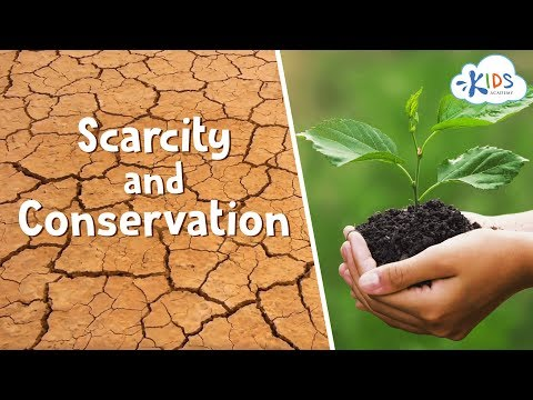 Saving Earth's Resources | How to Conserve Natural Resources: Water, Air, and Land | Kids Academy
