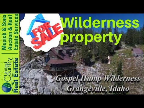 Cabin on the edge of the Gospel Hump Wideness, Idaho For sale