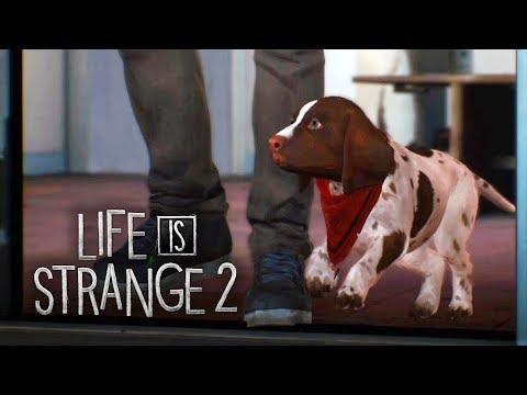 LIFE IS STRANGE 2 #7 - Navio, Capitão, Tripulação! (Gameplay em Português PT-BR) thumbnail