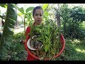 Awesome Cooking Fish With Water convolvulus Recipe-Cook Fish Recipes-Village Food Factory-Asian Food