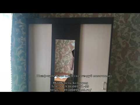 Шкаф-купе Бася 1.3 м (венге-дуб молочный) Мебельный рай