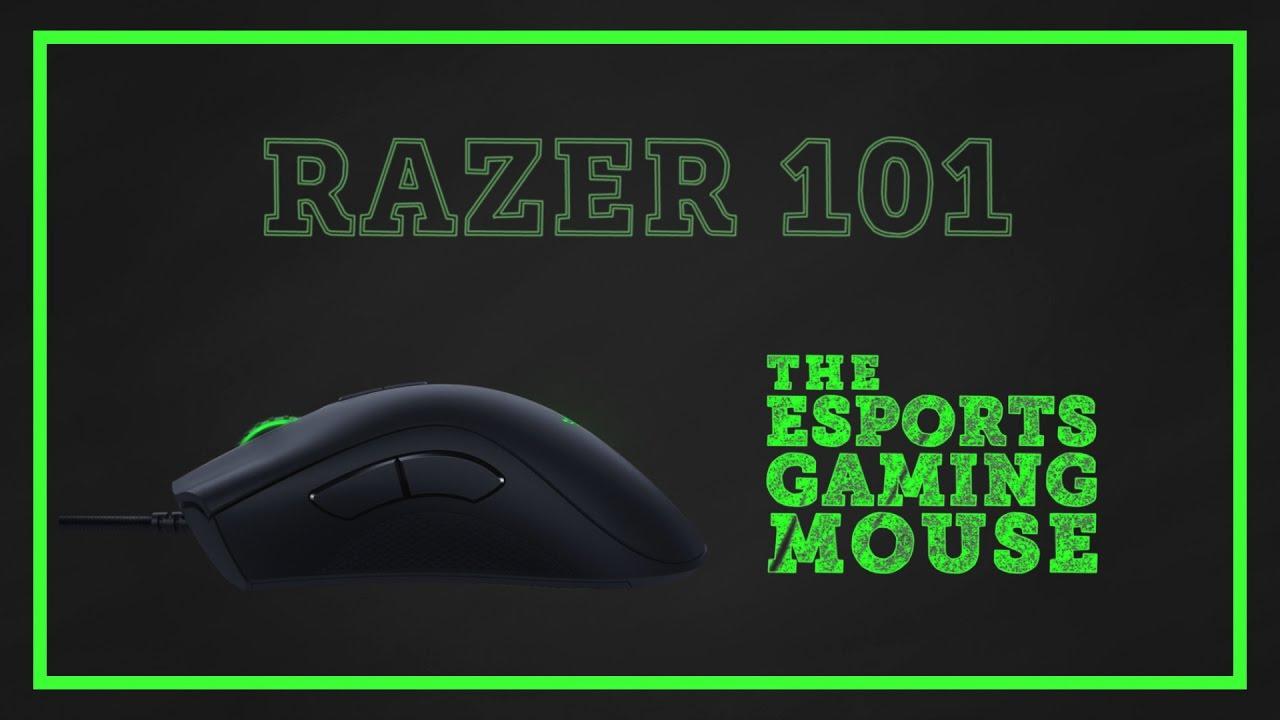753cd944e8b Razer 101 | Deathadder Elite - The Esports Gaming Mouse - YouTube