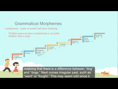 First Language Acquisition: What it looks like Part 1